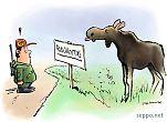 Metsästäjä - hirvi - rauhoitusalue