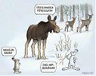 Riistapelto ruokkii eläimiä talvella
