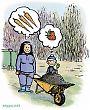 Komposti menossa kasvimaalle