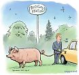 Biokaasua autoon