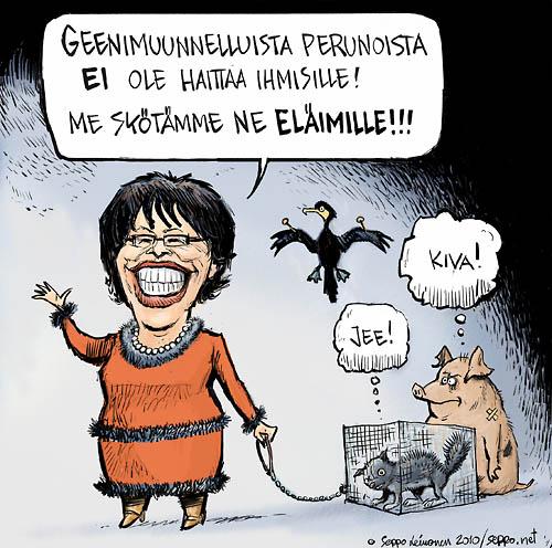 Sirkka-Liisa Anttila GMO peruna ja eläimet