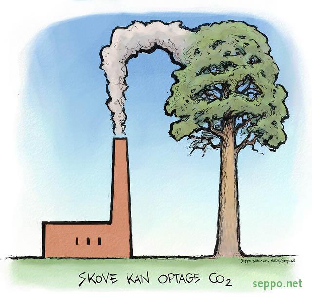 Ilmastonmuutos metsä