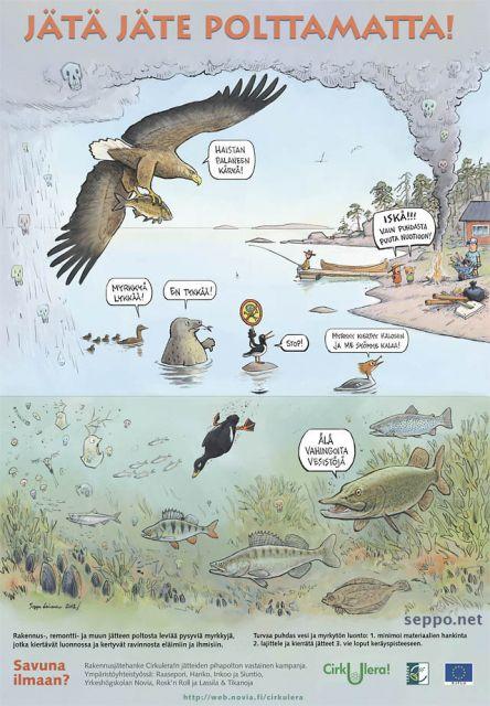 Itämeri - jätteenpolton myrkyt rikastuvat eliöihin