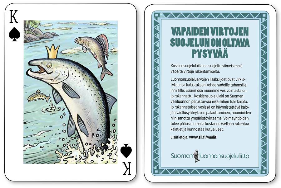 Vapaat virtavedet vaelluskalat koskiensuojelulaki