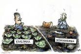 Kaalimaa - kemikaalimaa - maaperän saastuminen